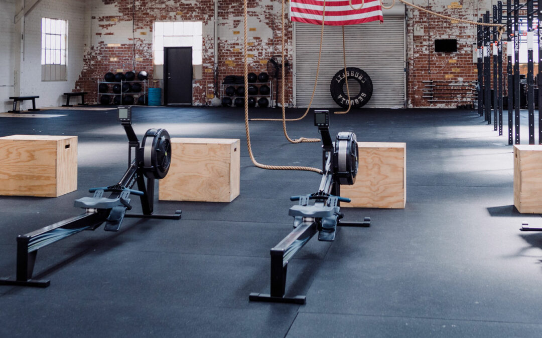 The Difference Between Eccentric and Concentric training