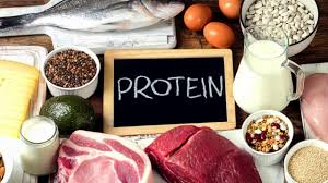 How To Assess Protein Quality: The Importance of Getting Quality Protein